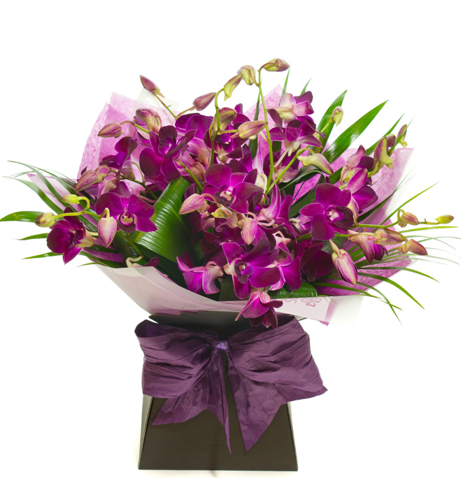 PINK DENDROBIUM ORCHID HAND TIED