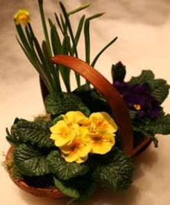 spring trug