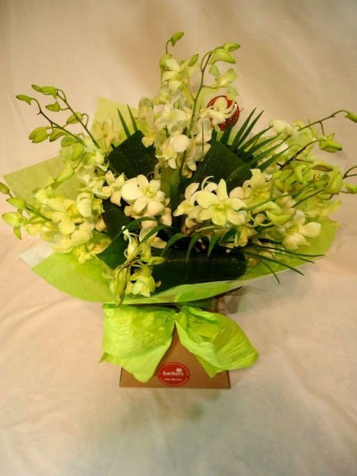 White singapore orchid hand tied
