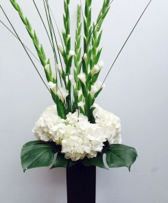 Hydrangea and Gladioli in a slim black vase