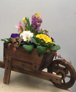 Spring planted wheelbarrow with windmill