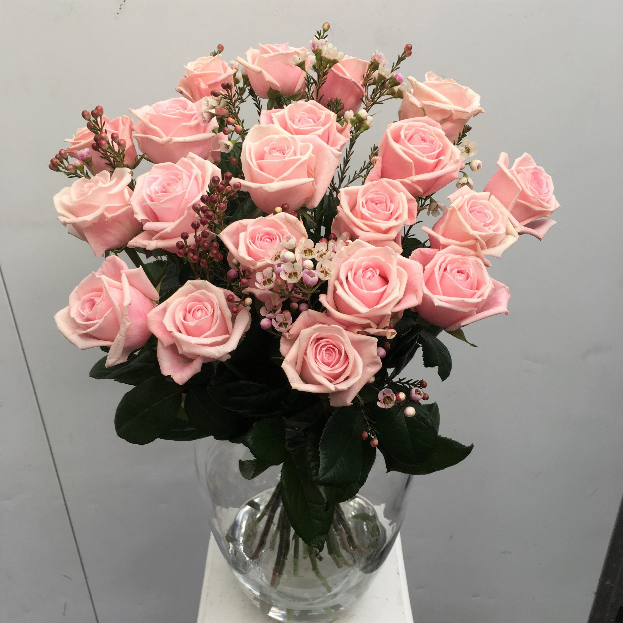20 long stem pink roses in a vase in a vase pink roses with wax flower floridaeventfo Choice Image