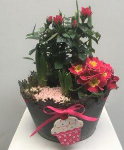 Cup Cake Bulb Planter
